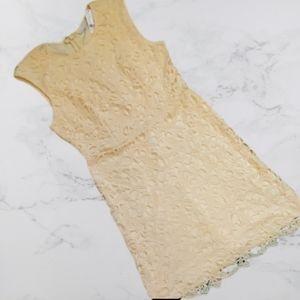 NY&CO dress size 12